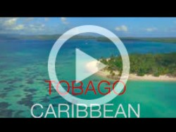 Tobago Caribbean Windsurf Kitesurf Spot Video