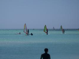 Aruba, Caribbean - windsurf beginner course