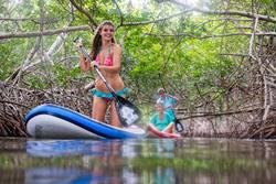Bonaire Windsurf and Kitesurf Holiday. SUP mangrove tours.