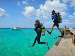 Bonaire Windsurf and Kitesurf Holiday. Scuba diving courses and snorkelling.