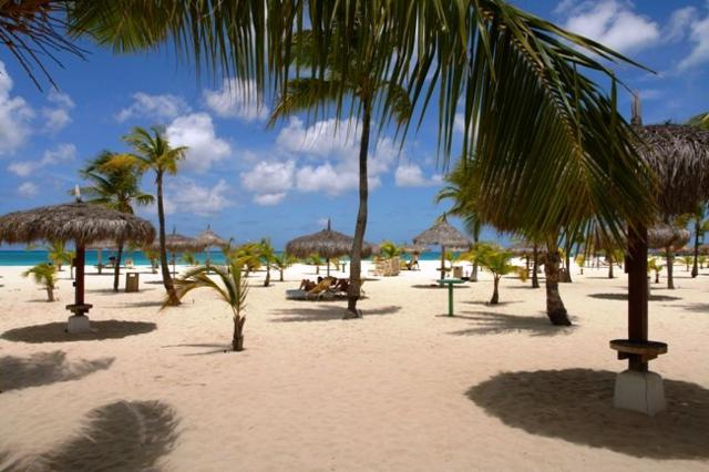 Manchebo Beach Resort Amp Spa Hotel Aruba Caribbean
