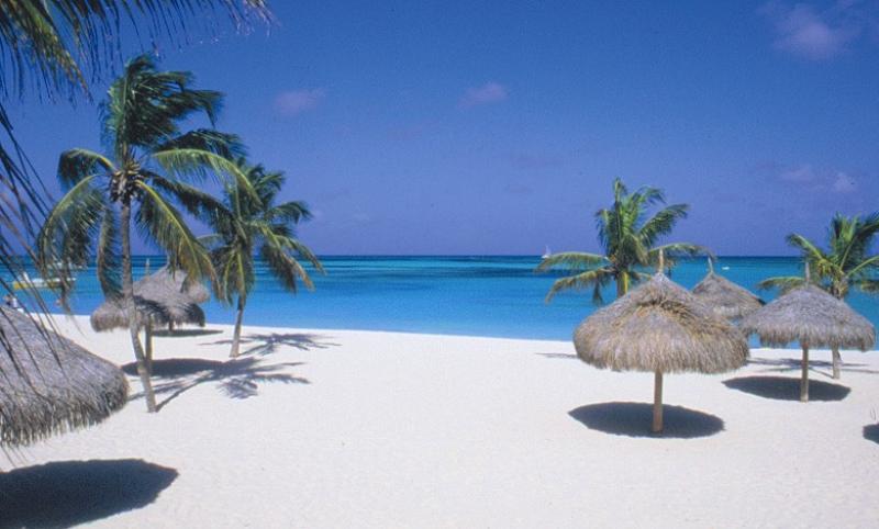 Hilton Aruba Caribbean Resort Amp Casino Aruba Windsurf