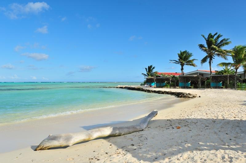 Sorobon Beach Resort And Wellness Bonaire Front Chalets